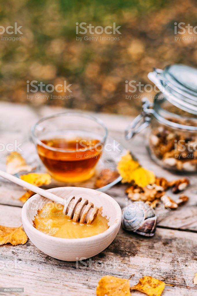Autumnal colours stock photo