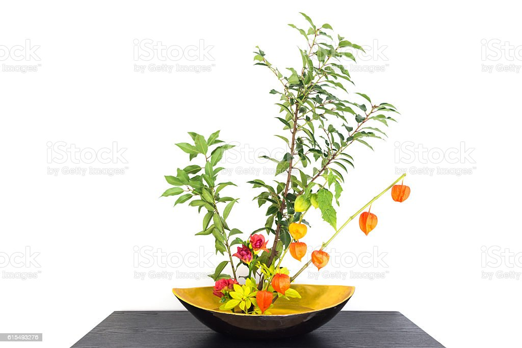Autumnal japanese flower arrangement (ikebana) with physalis stock photo