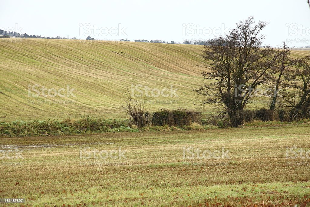 Autumnal landscape fields in Co.Cork, Ireland. royalty-free stock photo