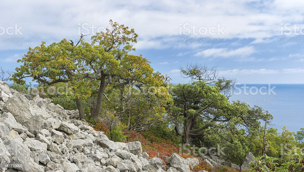 Autumnal landscape of the Black Sea shore royalty-free stock photo