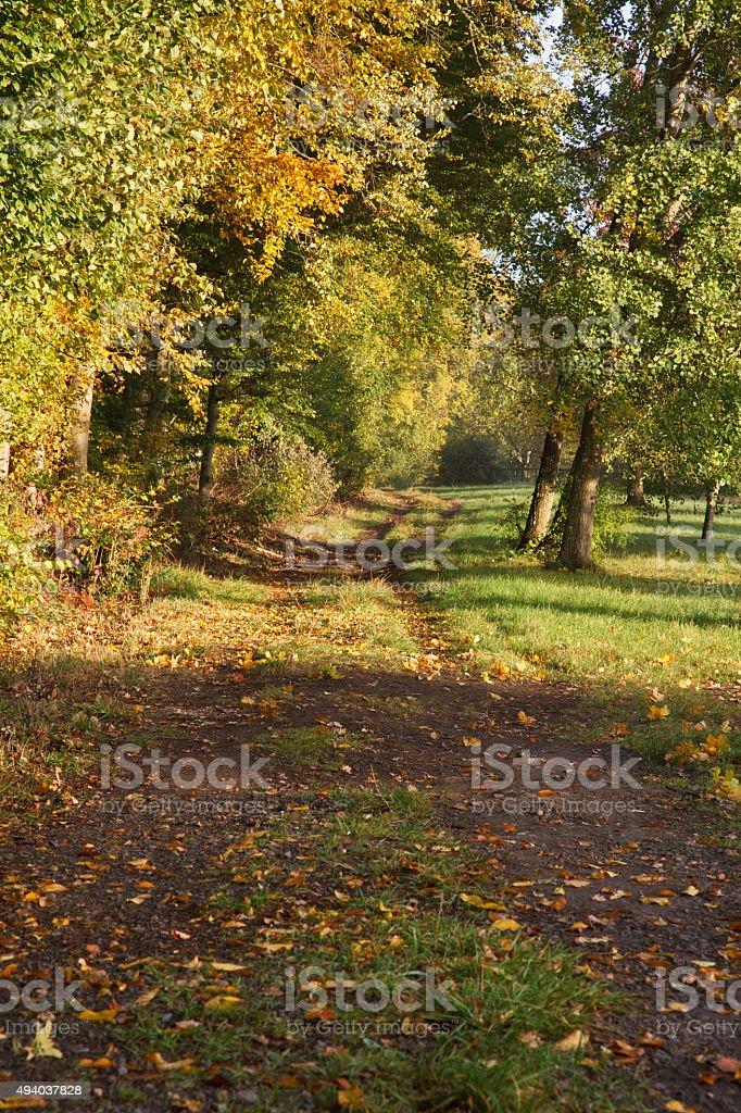 Herbstliche Landschaft stock photo
