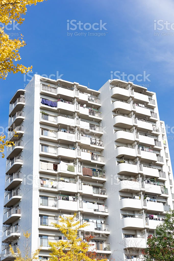 Autumnal leaves ginkgo and Japanese apartment. 4 stock photo