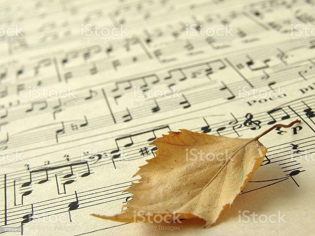 autumnal melody 1 royalty-free stock photo