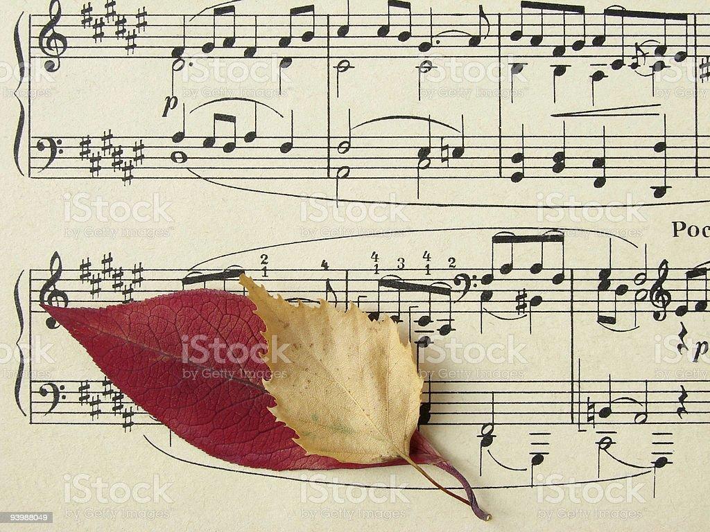 autumnal melody royalty-free stock photo