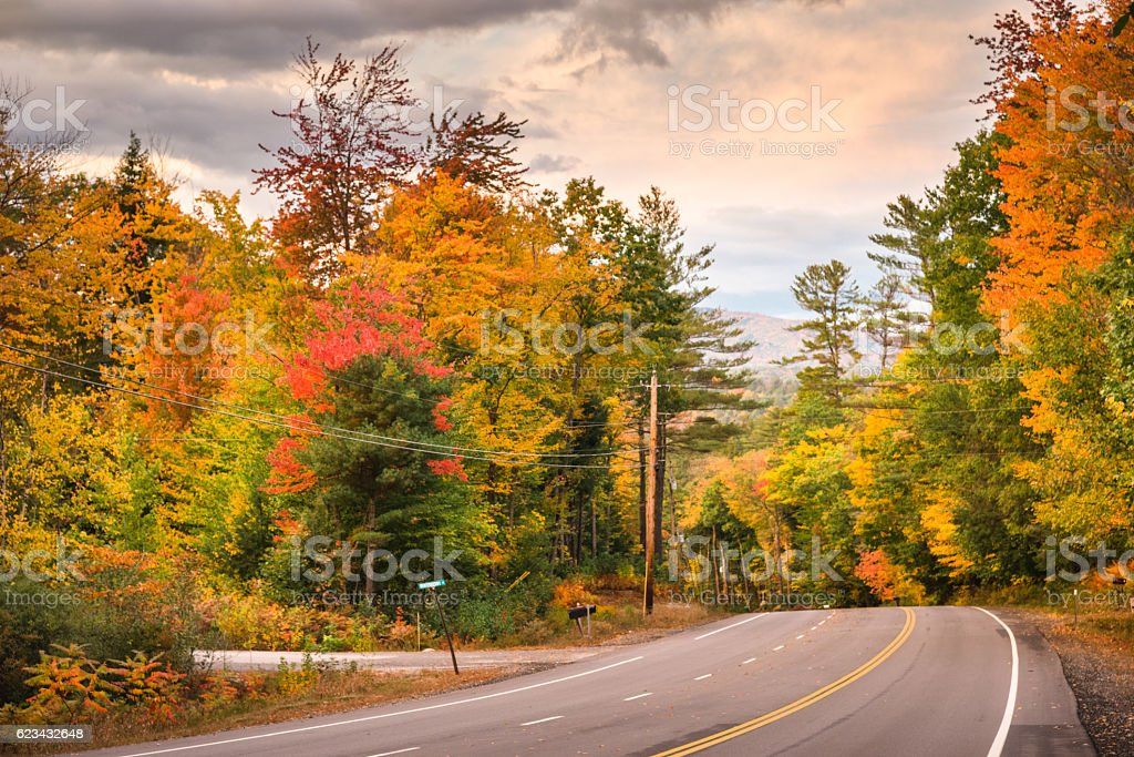 autumnal park in Vermont - New England during the autumn stock photo