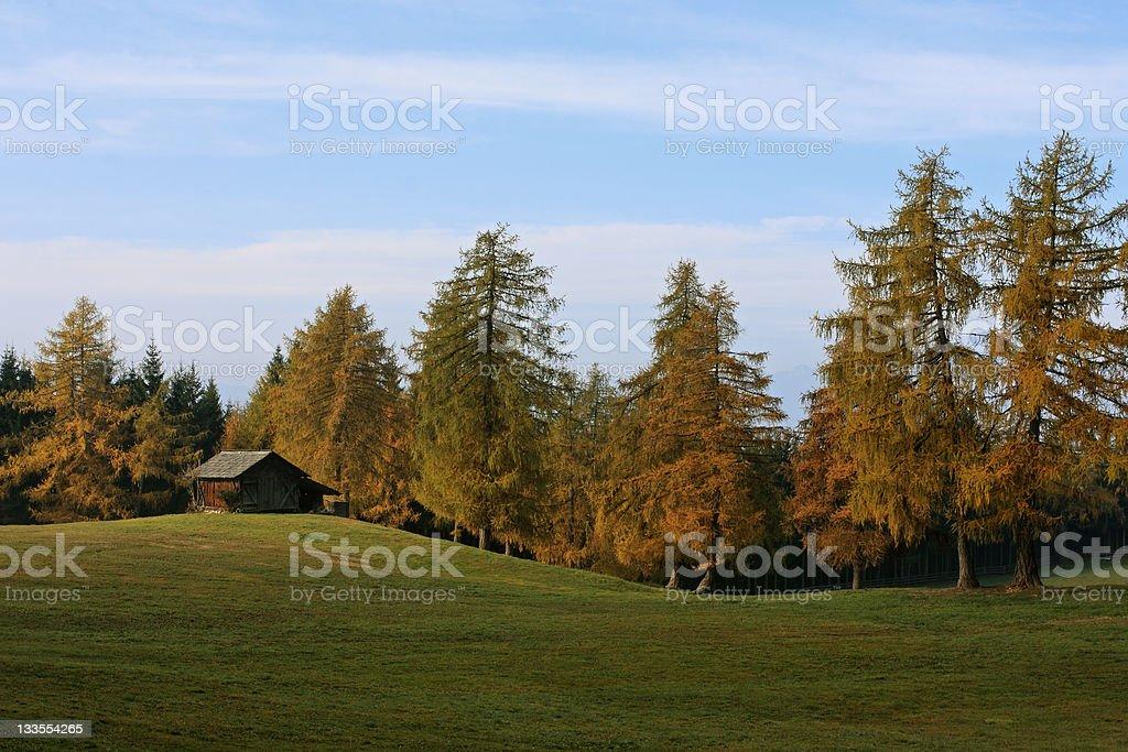 Autumnal scenery on Salten-Plateu stock photo