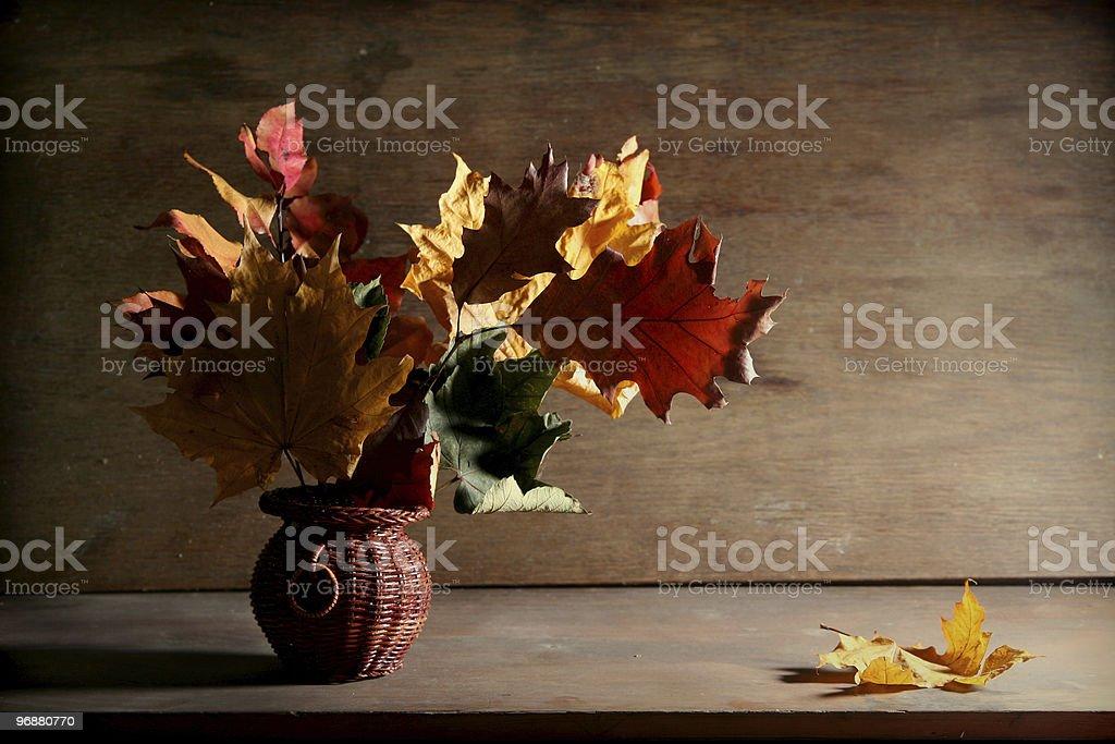 Autumnal still life royalty-free stock photo