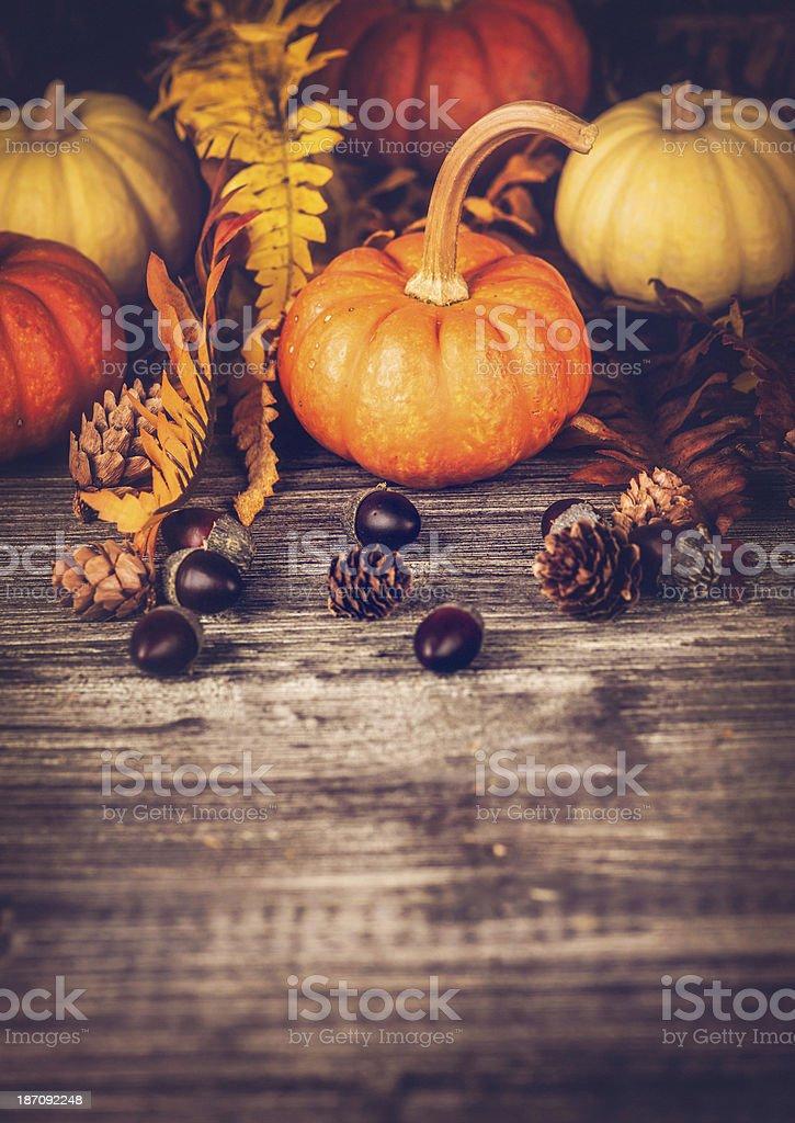 Autumnal Thanksgiving Arrangement stock photo