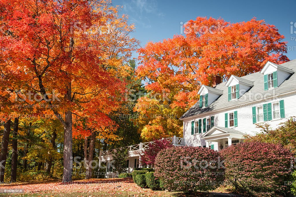 autumnal tree and residence in Vermont stock photo