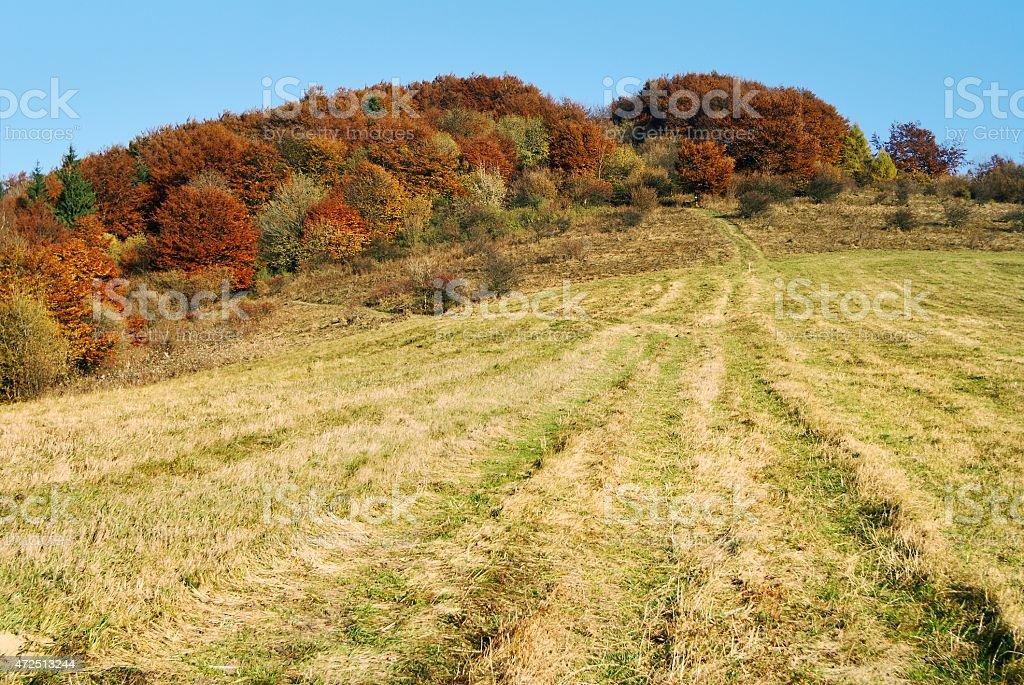 autumnal view of strazov mount in strazovske vrchy stock photo