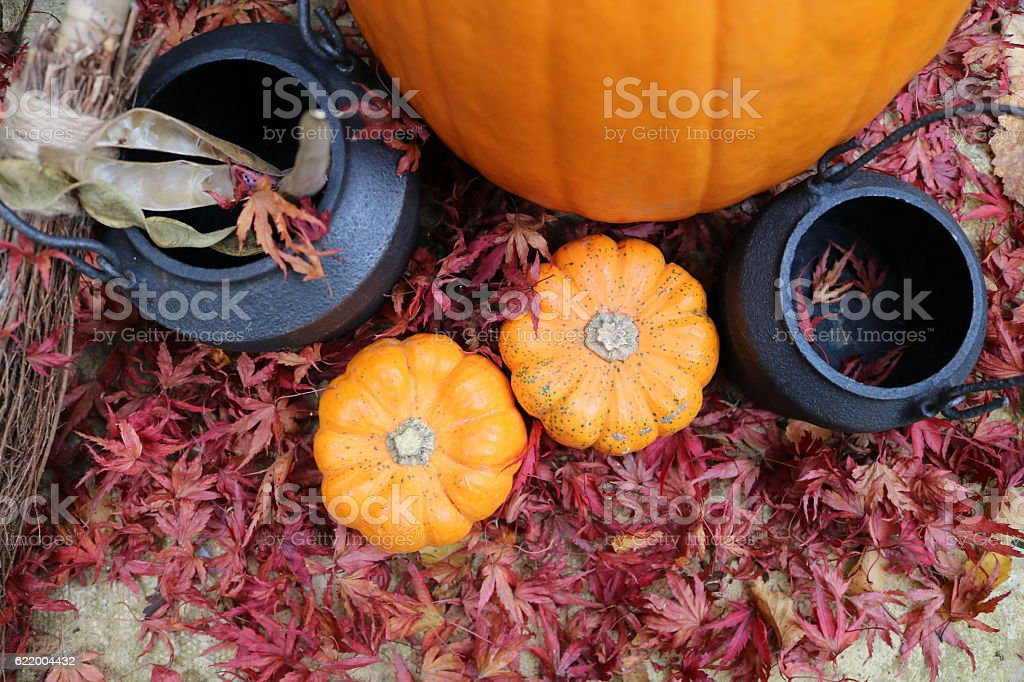 Autumnal witches starter kit zoomed out stock photo