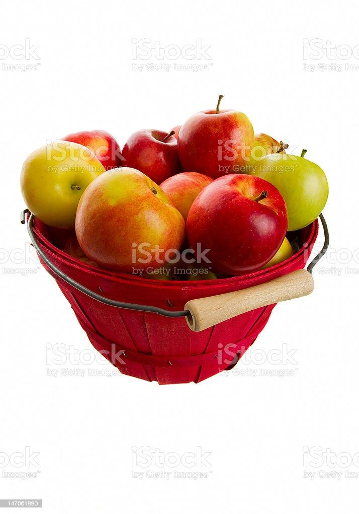 Autumns Apples royalty-free stock photo