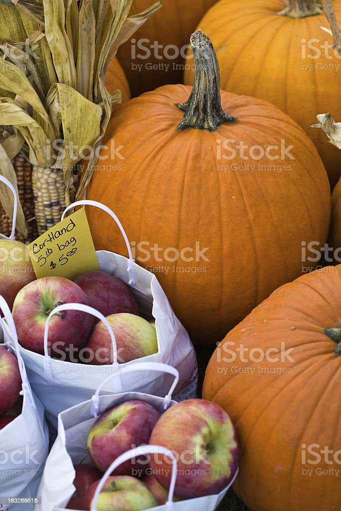Autumn's Bounty stock photo