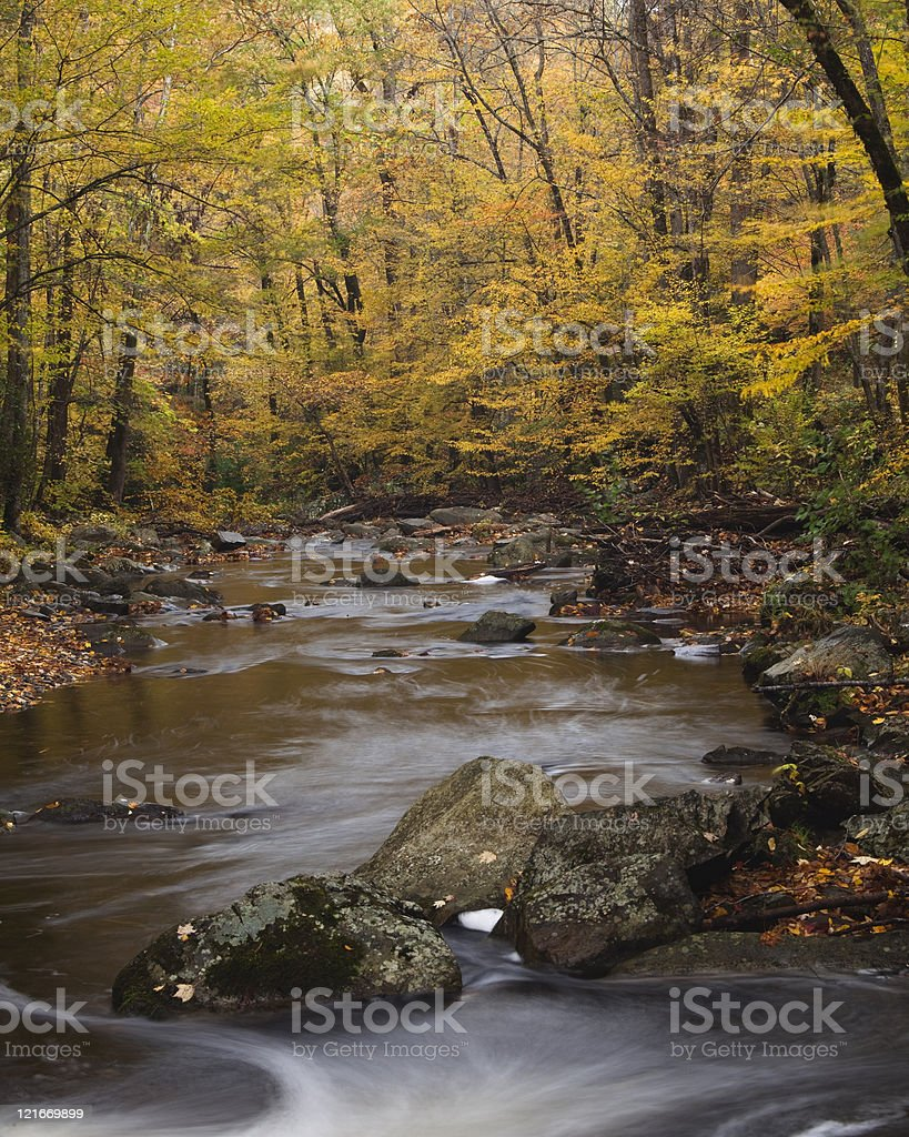 Autumn's Color in the Smoky Mountains royalty-free stock photo