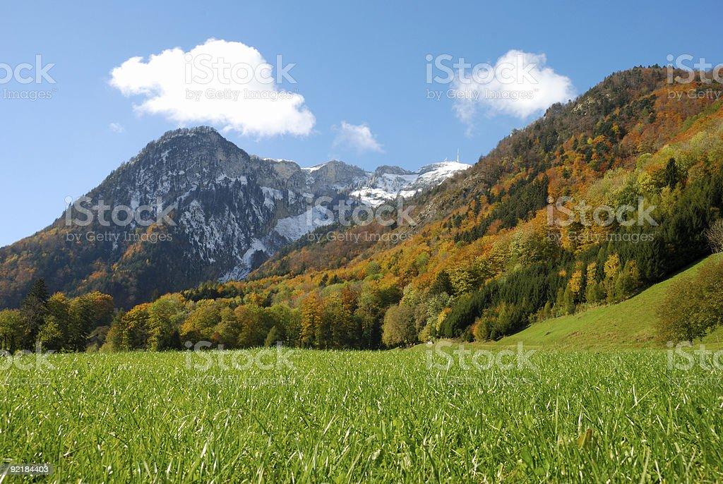 Autumn-Summer-Winter royalty-free stock photo