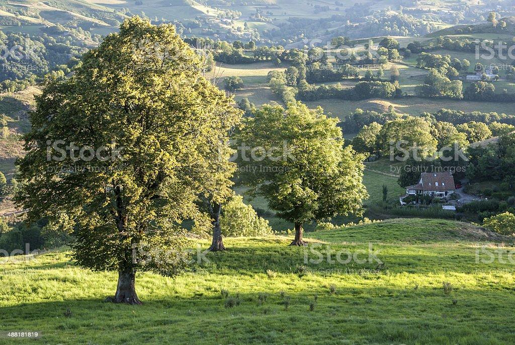 Auvergne landscape, near Aurillac, France stock photo