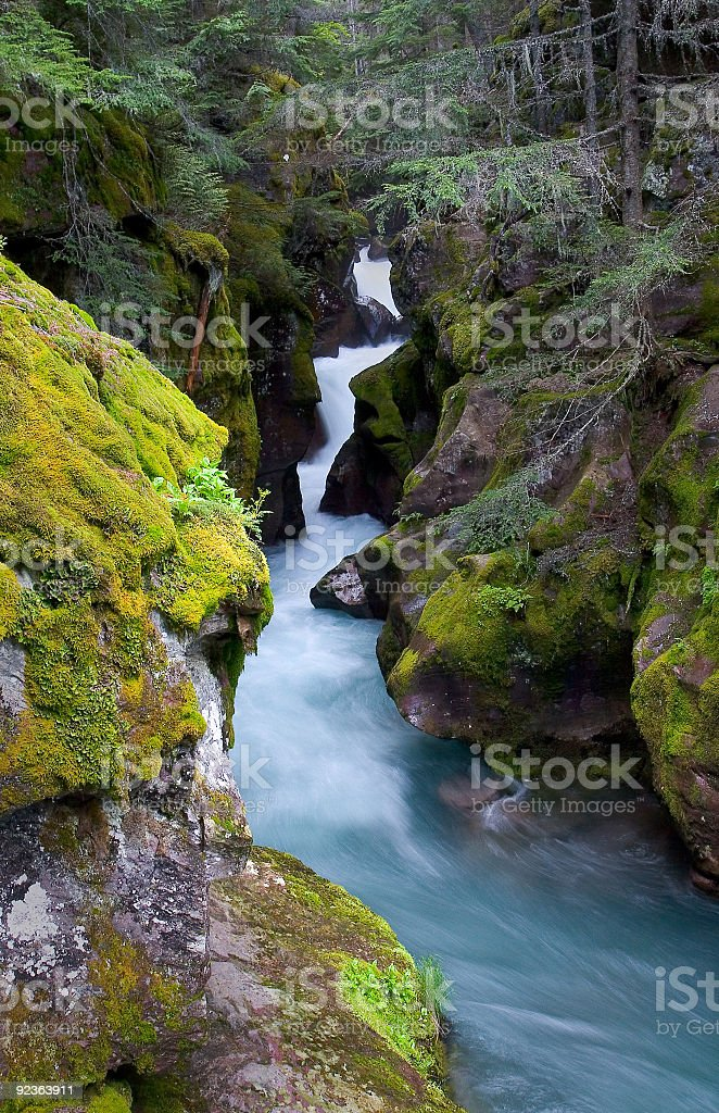 Avalanche Creek, Glacier National Park stock photo