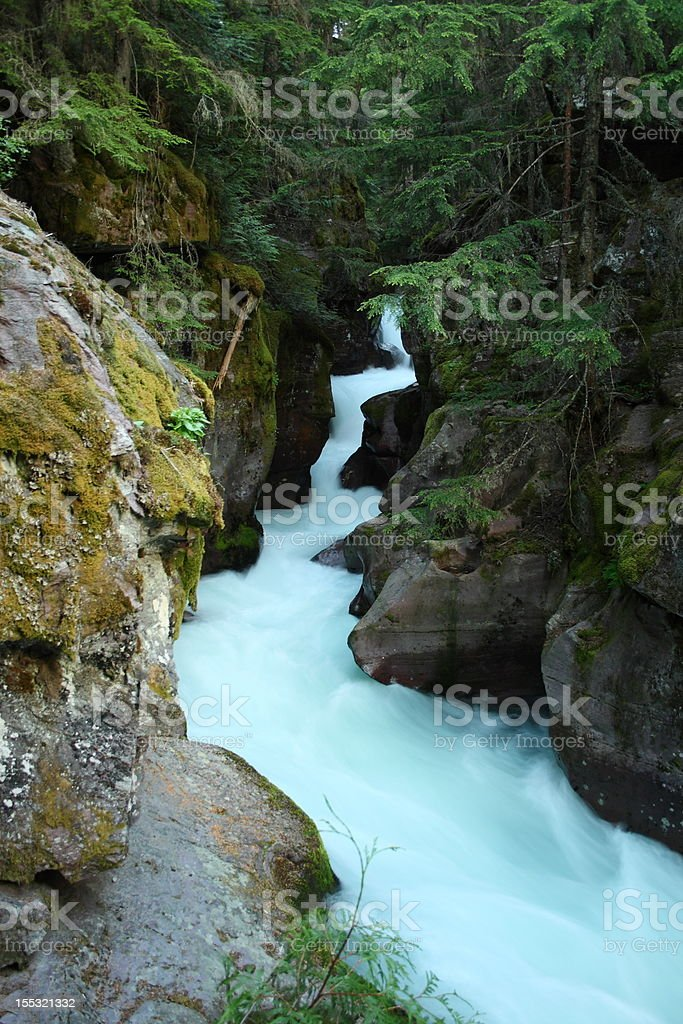 Avalanche Creek in Montana royalty-free stock photo