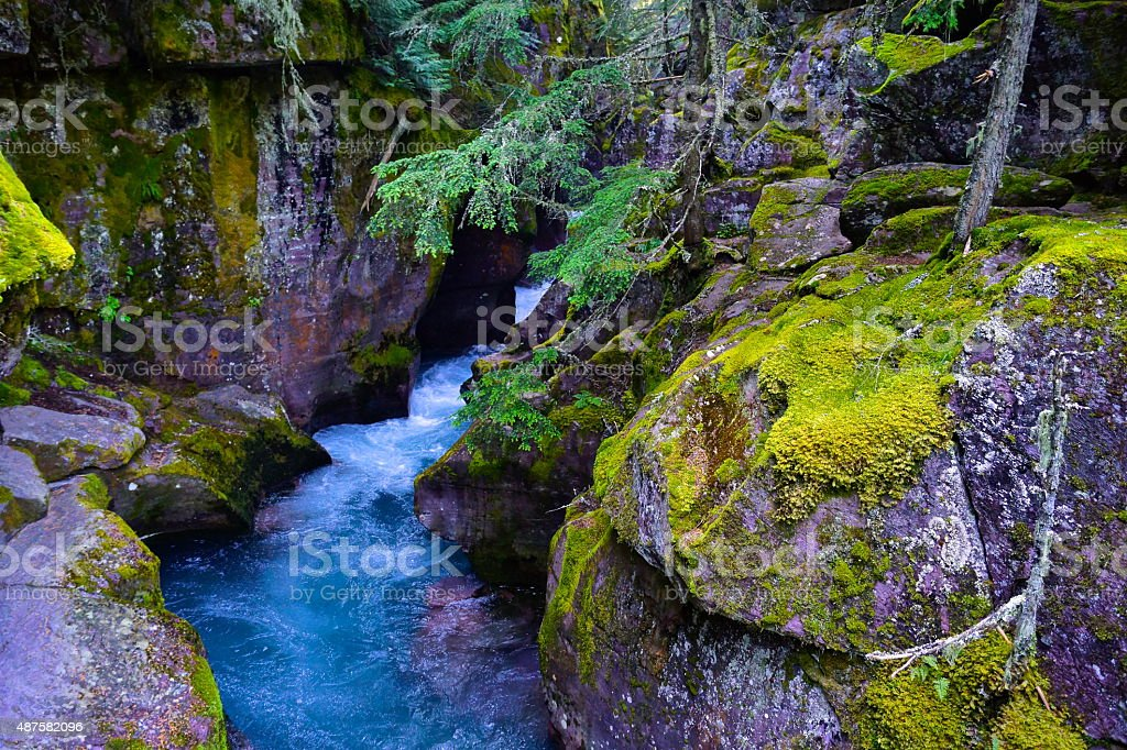 Avalanche Creek Trench stock photo