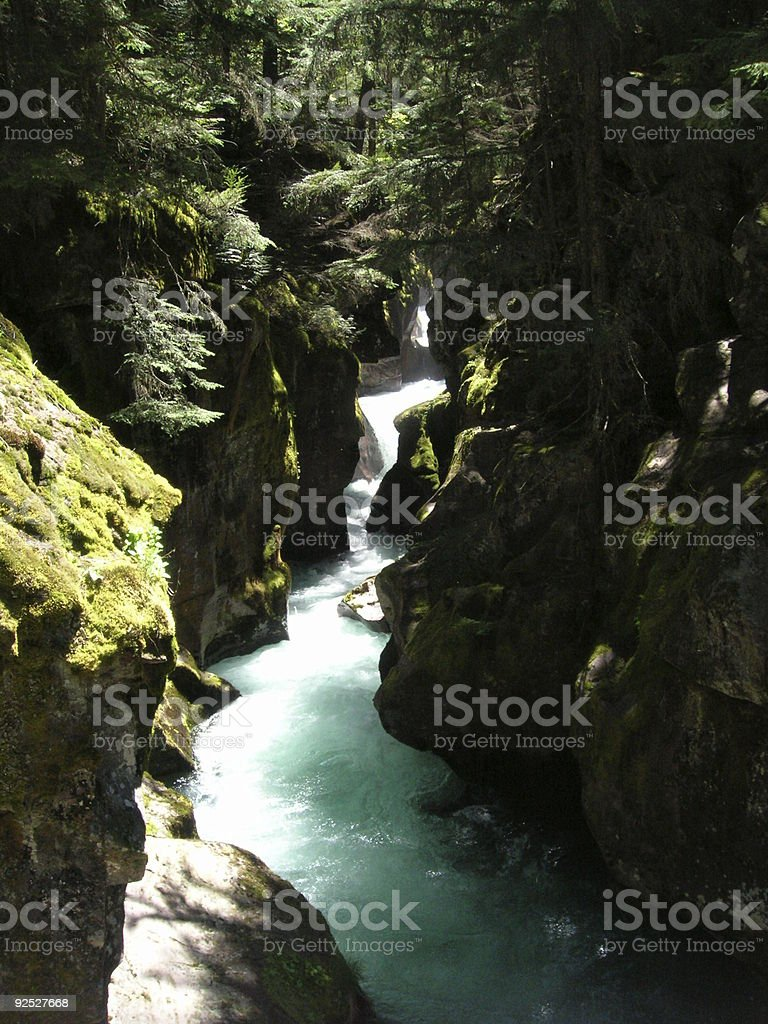 Avalanche Creek - vertical stock photo
