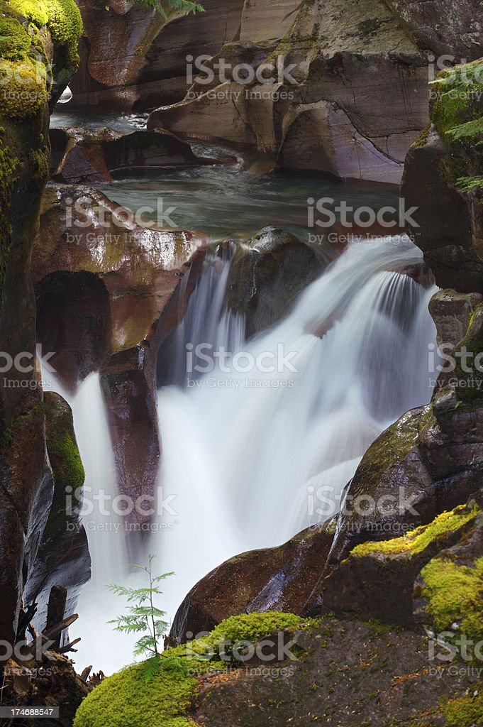 Avalanche Gorge royalty-free stock photo