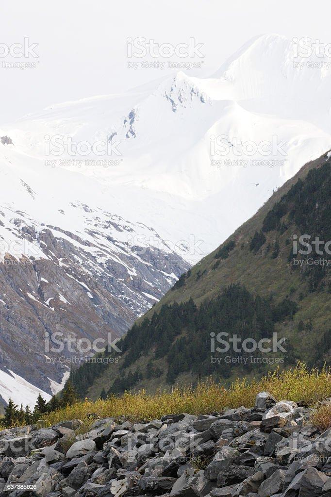 Avalanche Snow Portage Glacier Kenai Mountains stock photo