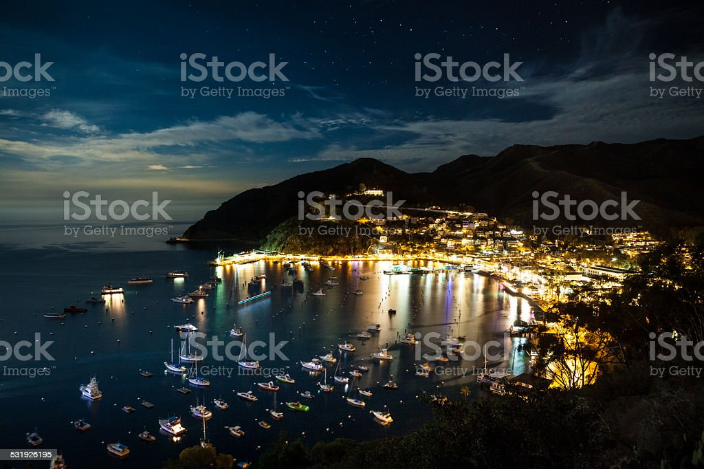 Avalon Harbor At Night royalty-free stock photo