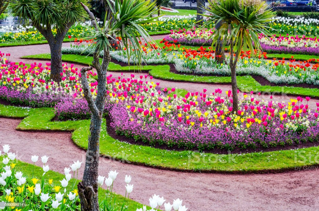 Avenue in the city park, colorful flowers, exotic plants, resting...