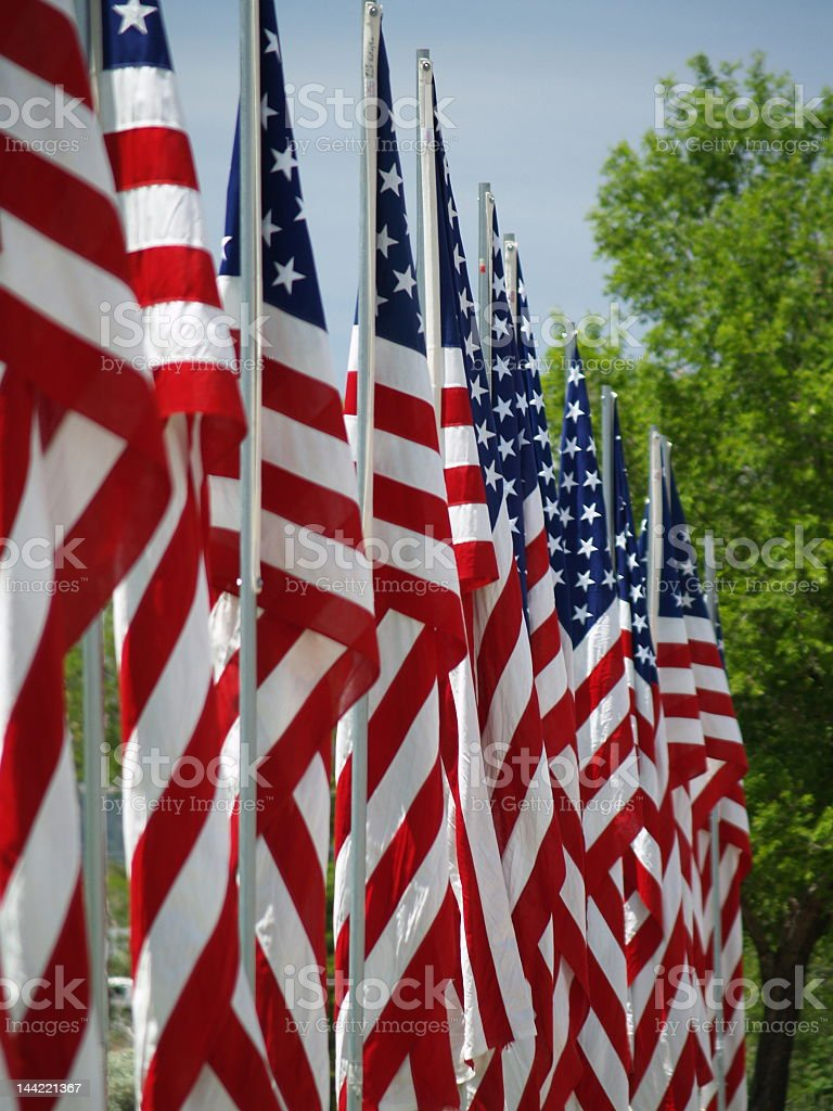 Avenue of flags royalty-free stock photo