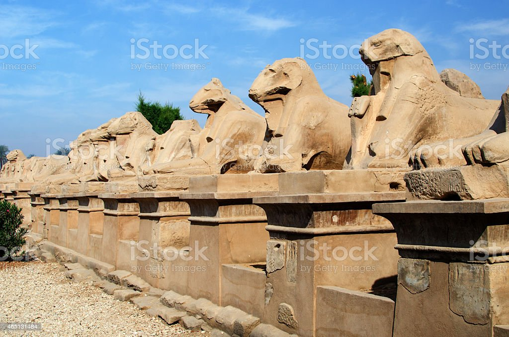 Avenue of ram-headed sphinxes i (Karnak Temple Complex, Luxor, Egypt) stock photo