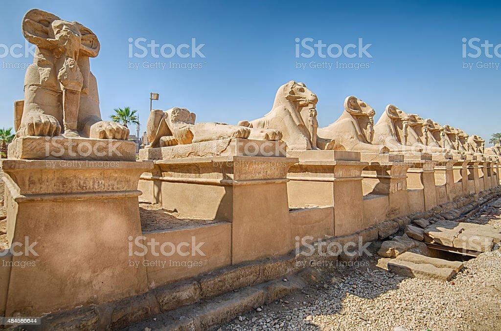 Avenue of  sphinxes in Karnak, Egypt stock photo