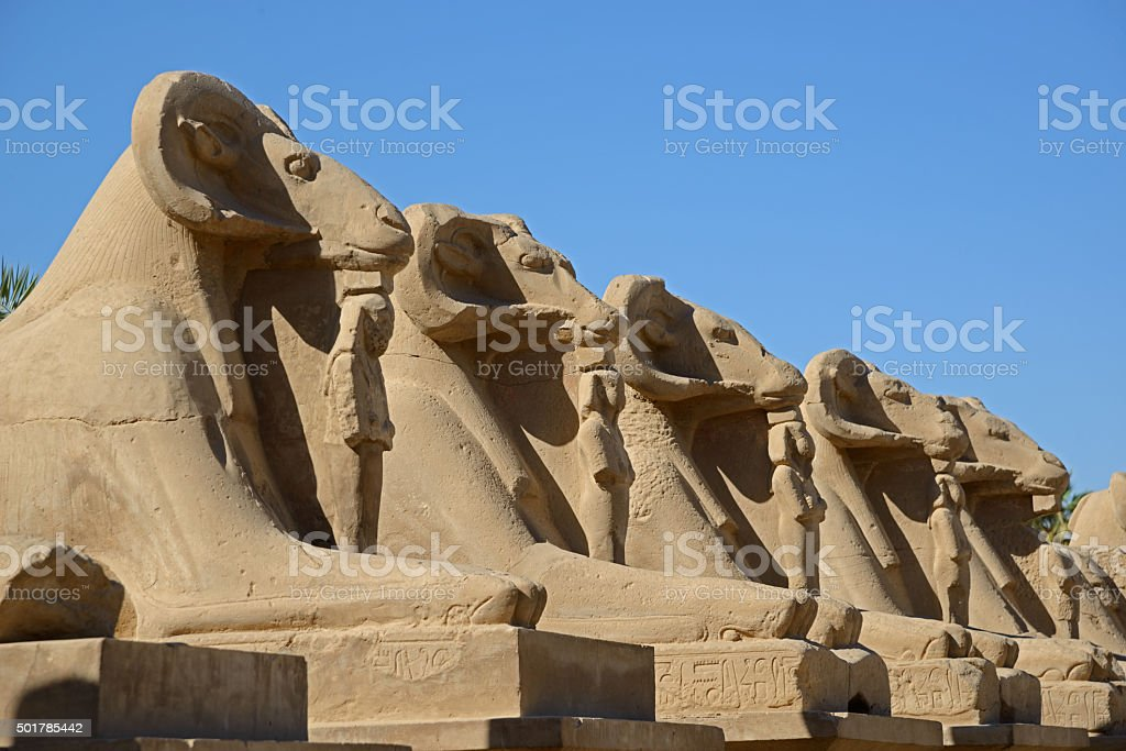 Avenue of sphinxes - Luxor stock photo