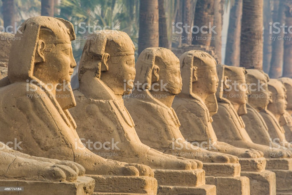 Avenue of Sphinxes (Luxor, Egypt) stock photo