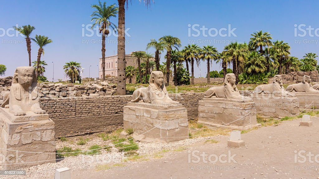 Avenue of the Sphinxes, Egypt stock photo