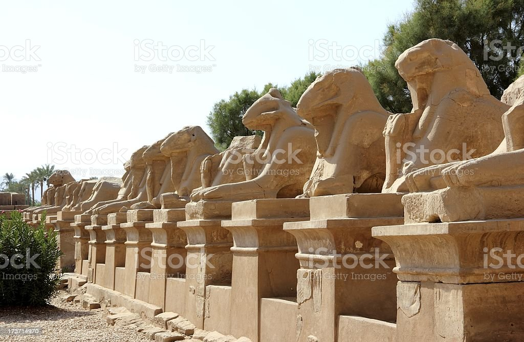 Avenue of the Sphinxes. Karnak Temple Complex, Luxor, Egypt. stock photo
