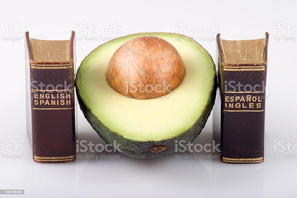 Avocado and Dictionaries royalty-free stock photo