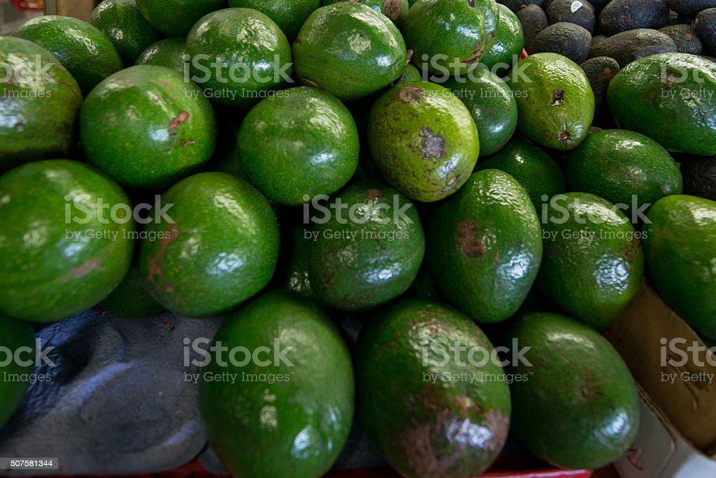 Avocado at the Market stock photo