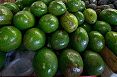 Avocado at the Market