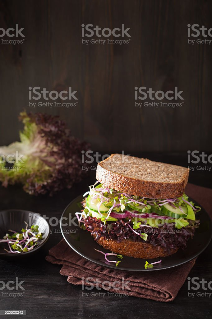 avocado cucumber sandwich with onion and radish sprouts stock photo
