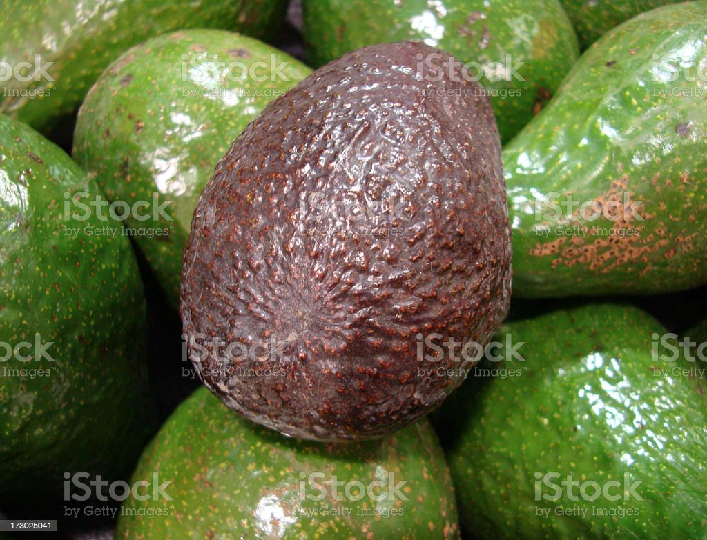 Avocado Hass royalty-free stock photo
