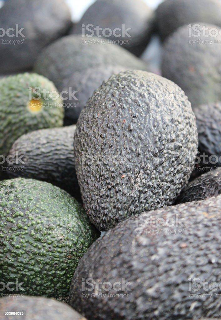 Авокадо Стоковые фото Стоковая фотография
