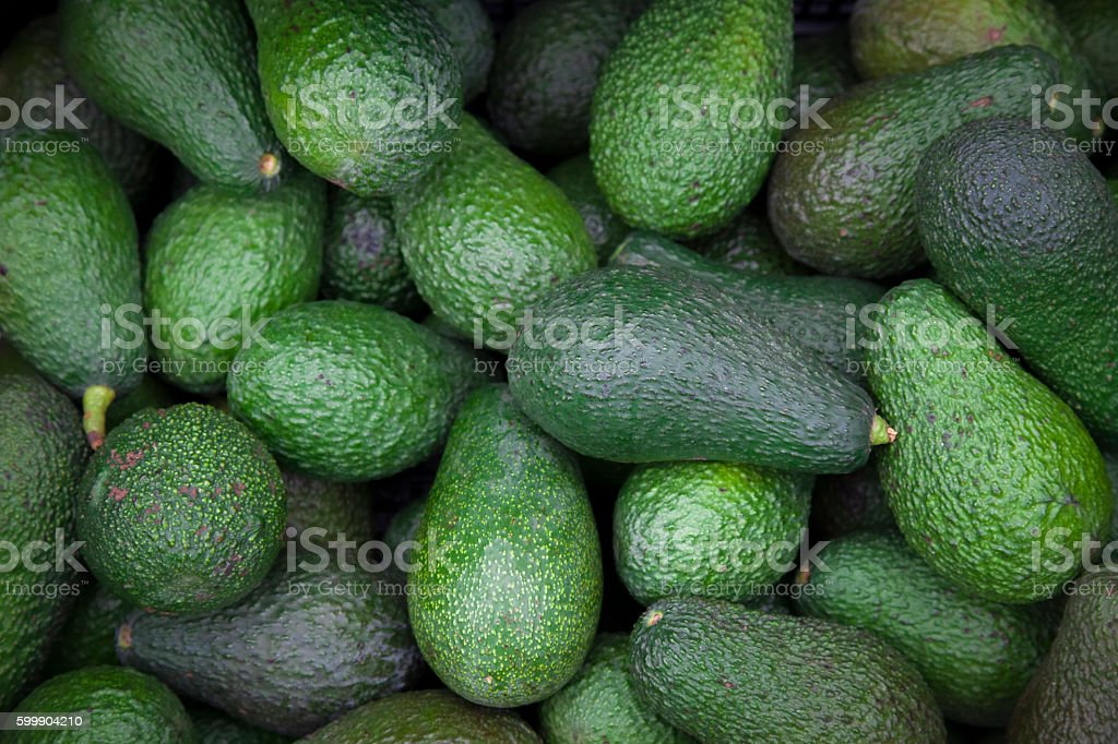 Avocado. stock photo