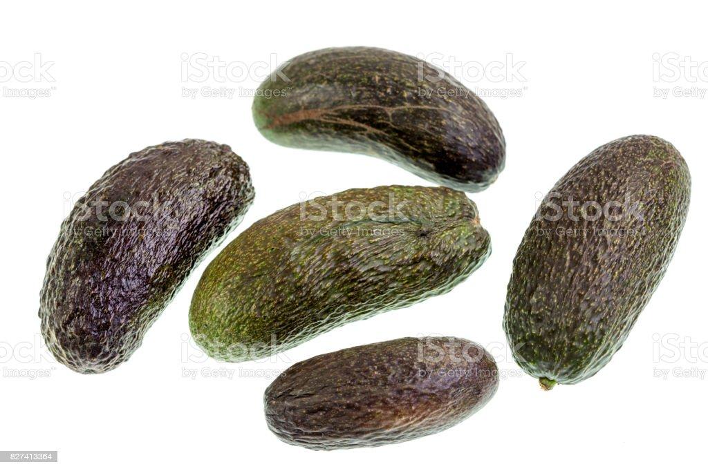 Avocado Seedless Fruit stock photo