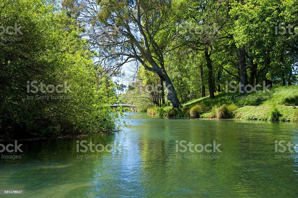 AVon river, Christchurch (NZ) stock photo