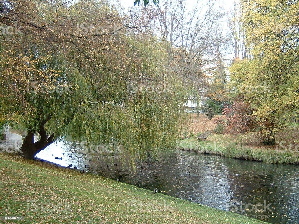Avon River stock photo