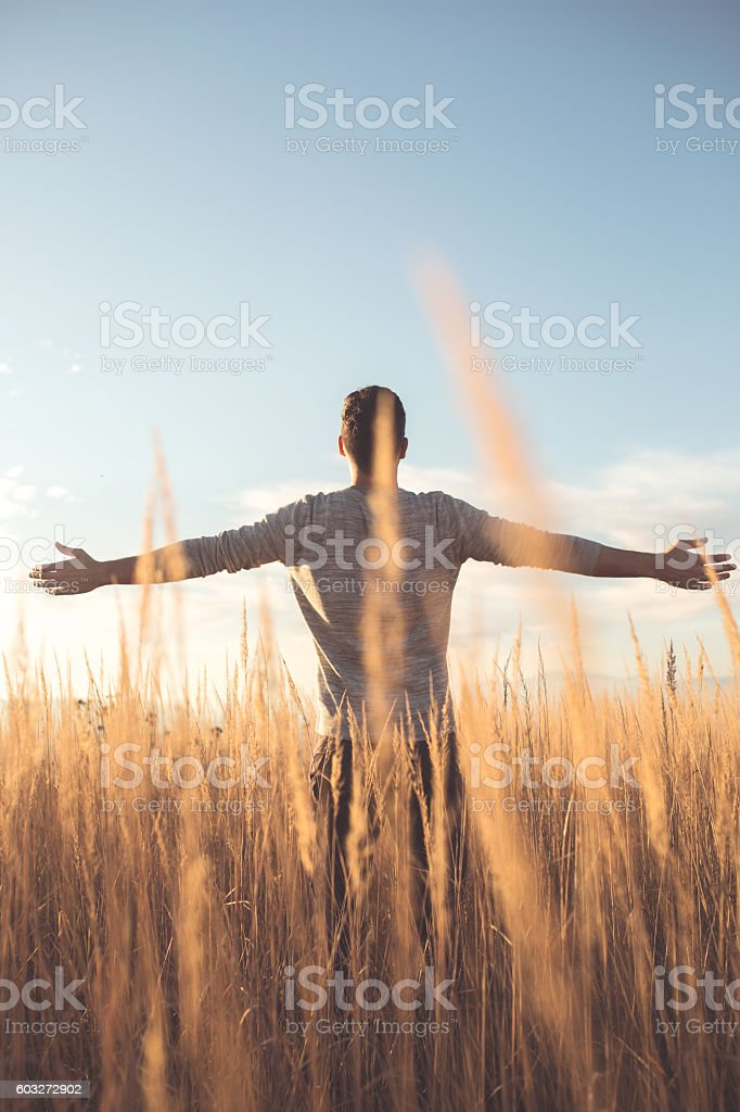 Away and free stock photo