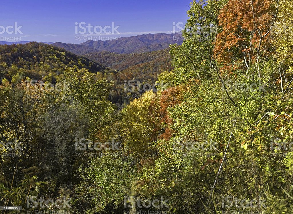 Awesome Autumn In the Blue Ridge royalty-free stock photo