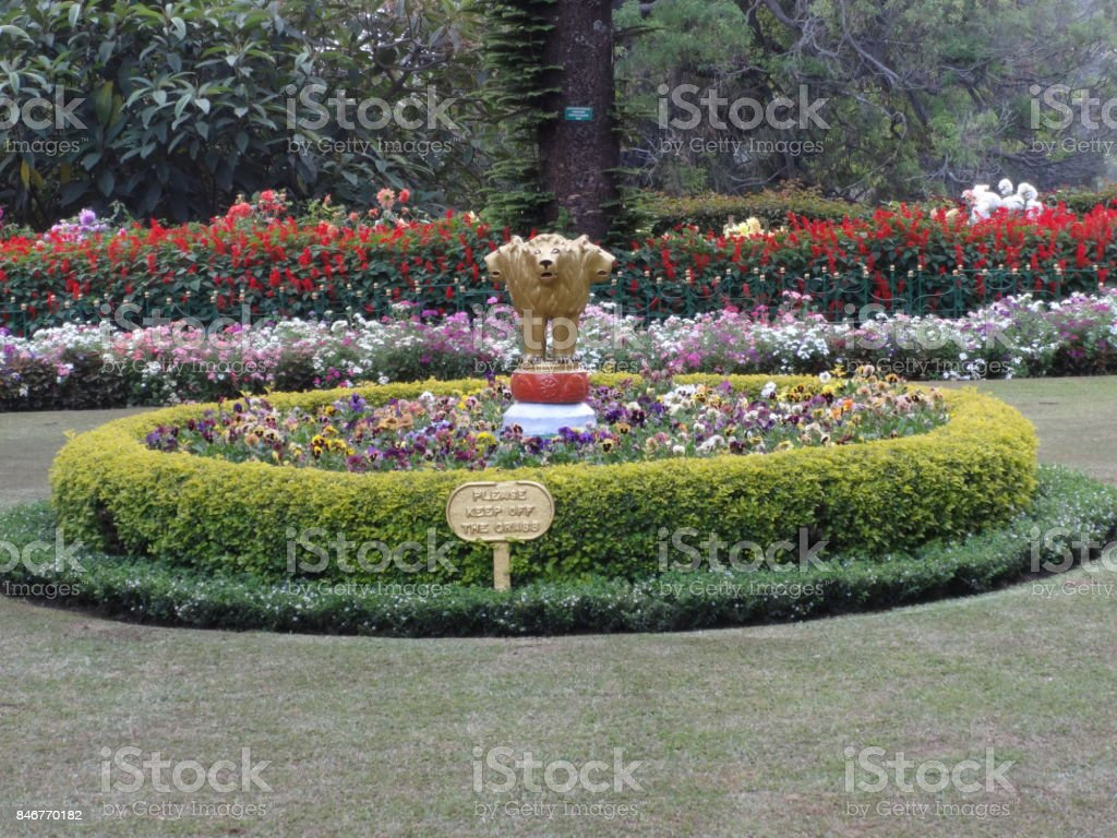 This is a very good snap of ooty rose garden, india. In this rose...