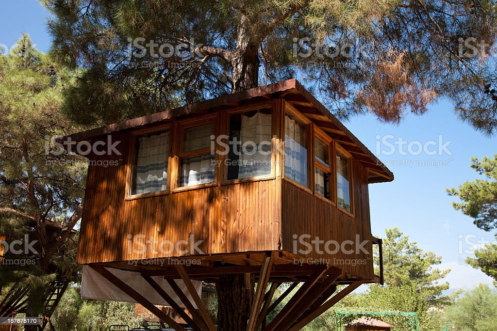 Awesome tree house up high in single tree stock photo