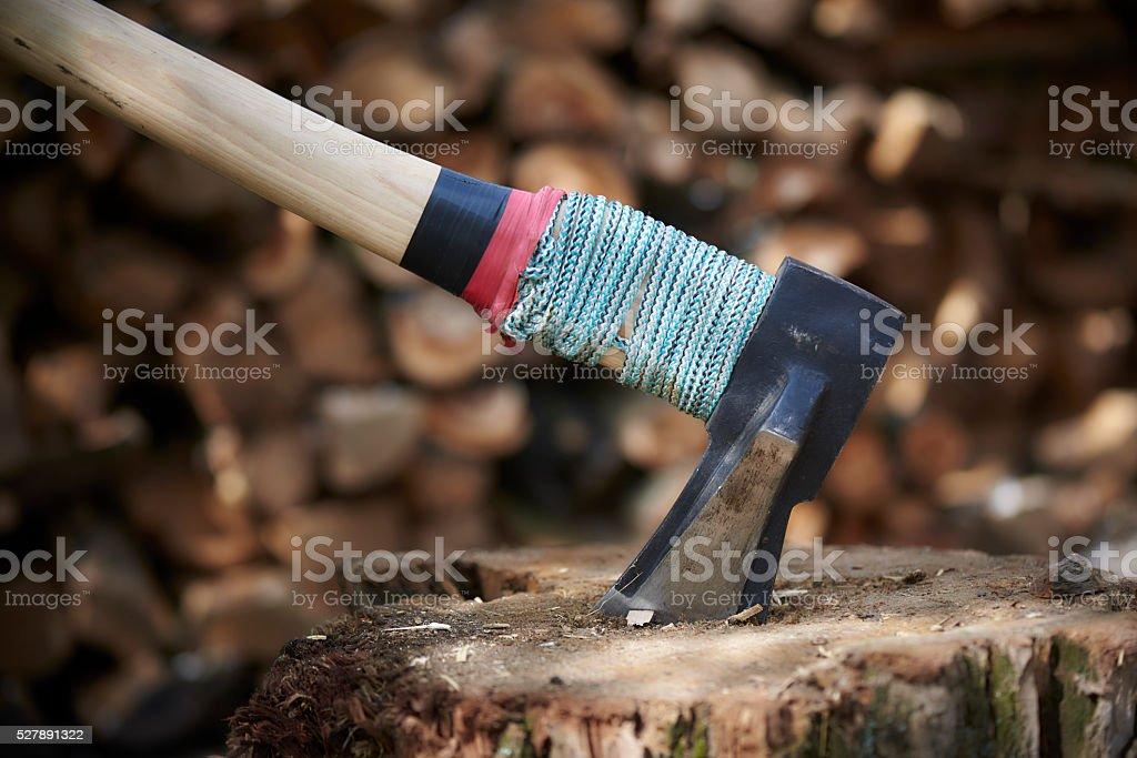 Ax stuck in a Stump stock photo